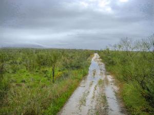 Zwischen dem Alcántara Stausee und Cañaveral