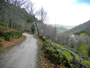 Zwischen Puerto de Béjar und Calzada de Béjar