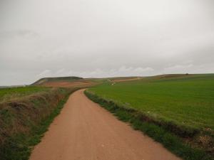 Zwischen Morille und Salamanca