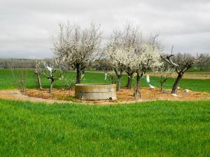 Zwischen Cubo del Vino und Zamora