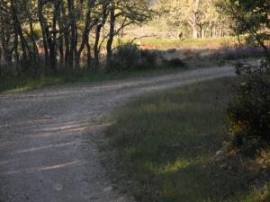 Auf Abwegen südlich von Mombuey