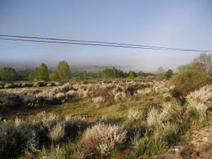 zwischen Puebla de Sanabria und Requejo