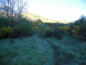 zwischen Lubián und dem A-Canda-Pass