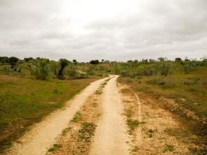 Zwischen Casar de Cáceres und dem Alcántara Stausee