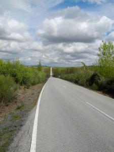 Zwischen Riolobos und Galisteo