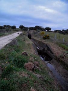 Zwischen Carcaboso und Cáparra