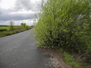 Zwischen Cáparra und Aldeanueva del Camino