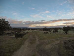 Zwischen Fuenterroble de Salvatierra und Morille