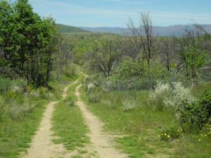 zwischen Asturianos und Palacios de Sanabria