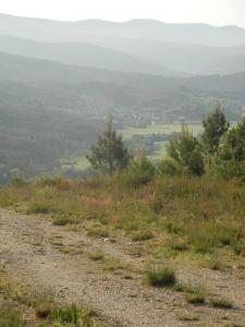 Zwischen Laza und Alberguería