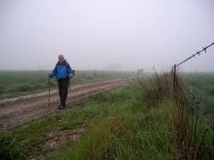 Zwischen Calzadilla de los Barros und Puebla de Sancho Pérez